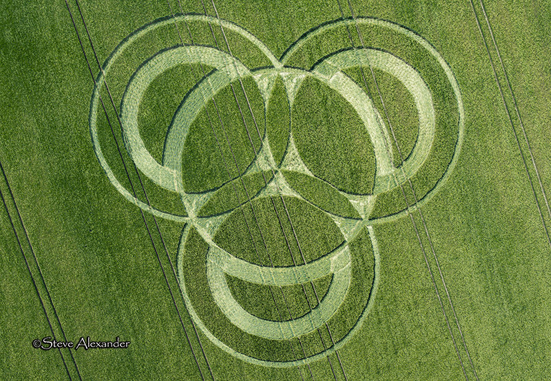 Crop Circle Hampshire