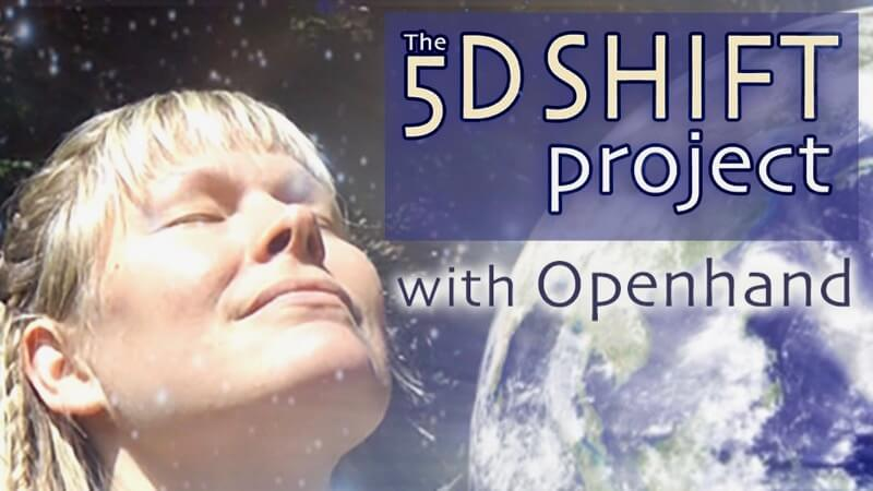 5D Shift Project with Openhand