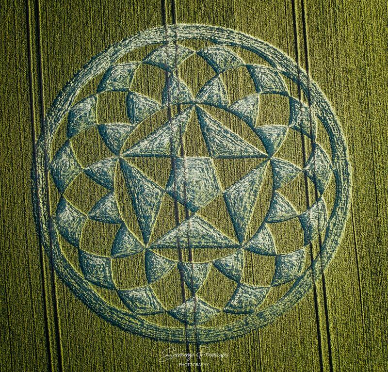 5D Cyrstalline Grid Crop Circle Intuited by Openhand