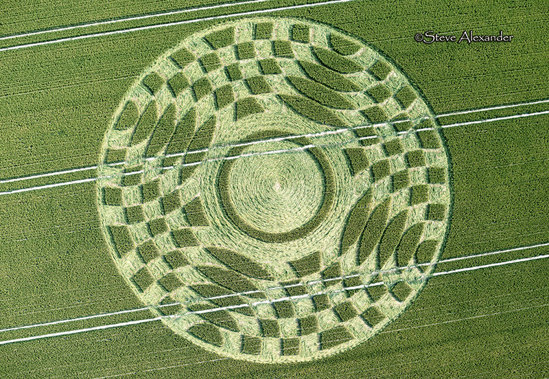 New Crop Circle in Hampshire