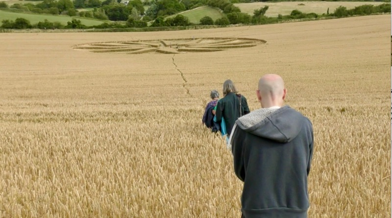 Avebury Summer School 19 - Crop Circle air of Excitement
