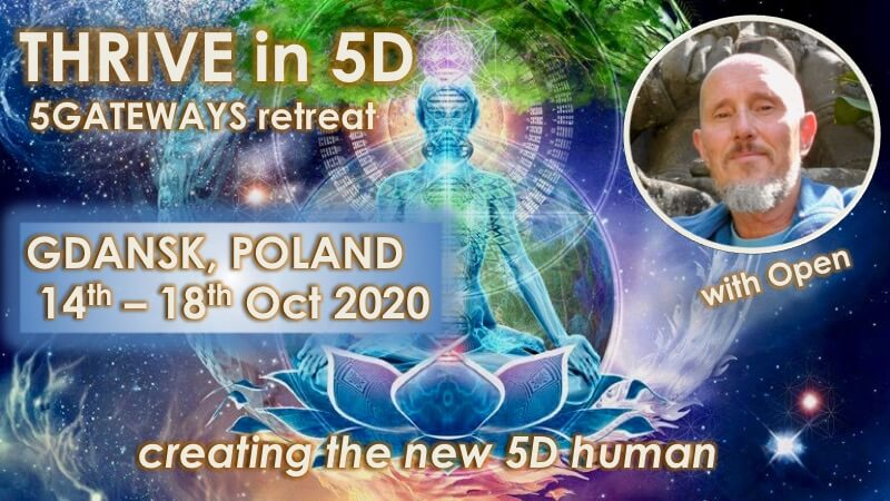 Thrive in 5D in Poland with Openhand