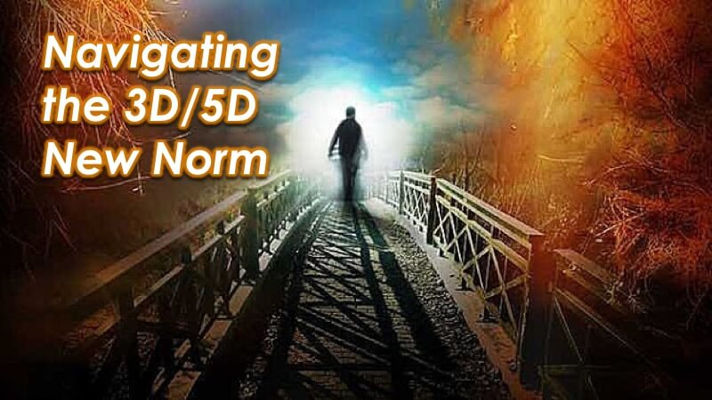The 3D/5D New Norm in Society