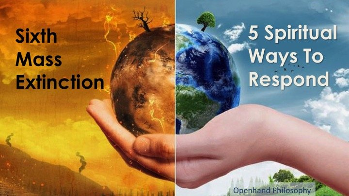 Sixth Mass Extinction, 5 Spiritual Ways to Respond