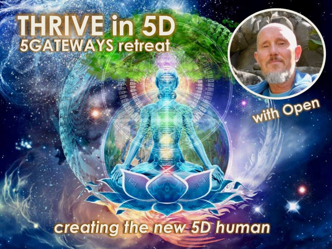 THRIVE in 5D with Openhand