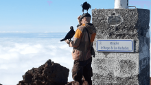 Ravens on the La Palma Volcano with Openhand